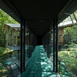 Ispirazione per un grande ingresso o corridoio minimalista con pareti nere, moquette e pavimento verde
