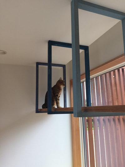 北欧 廊下 by 猫と建築社