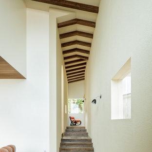 他の地域のトランジショナルスタイルのおしゃれな廊下 (白い壁) の写真