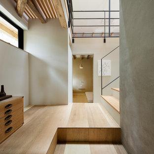 Свежая идея для дизайна: коридор среднего размера в восточном стиле с серыми стенами и светлым паркетным полом - отличное фото интерьера