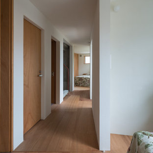 Hallway - contemporary plywood floor and brown floor hallway idea in Other with white walls