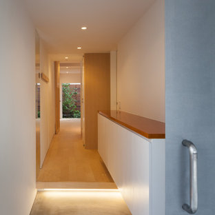 Inredning av en modern ingång och ytterdörr, med vita väggar, plywoodgolv, en skjutdörr, metalldörr och beiget golv