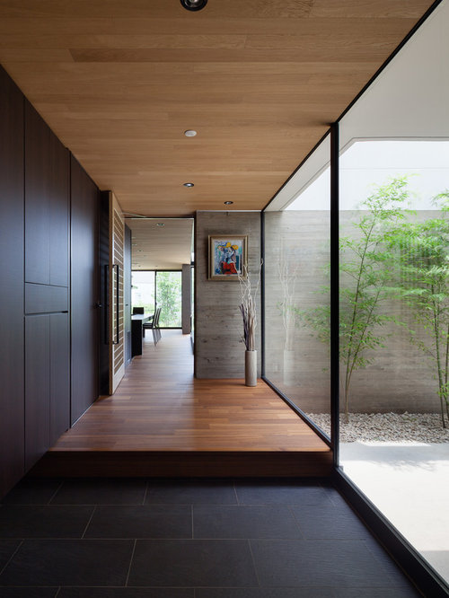 Foyer Minimalist Reviews : Modern entryway design ideas remodel pictures houzz