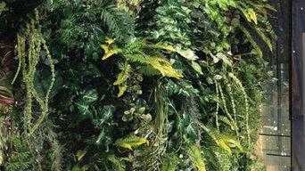 壁面緑化(美容室)