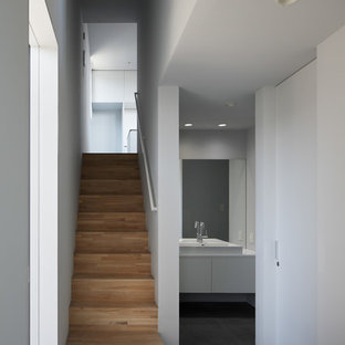 Foto de hall minimalista con paredes blancas, suelo de baldosas de porcelana, puerta simple y suelo negro