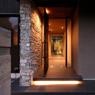 Foto de entrada moderna, grande, con paredes marrones, puerta simple, puerta de madera oscura y suelo negro