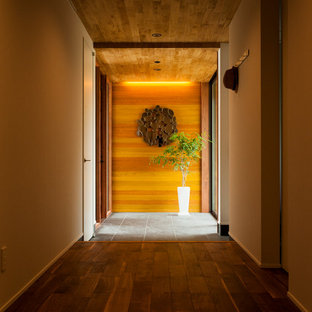Midcentury entry hall in Other.