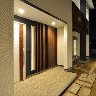 Foto di un ingresso o corridoio moderno con pareti bianche, pavimento alla veneziana, una porta singola e una porta bianca