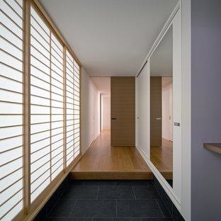Foto de hall moderno con paredes blancas y suelo negro