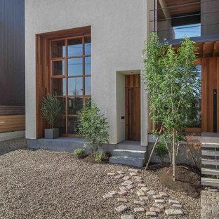 Ispirazione per una porta d'ingresso moderna con pareti bianche e una porta singola