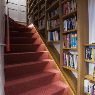 他の地域の中くらいのカーペット敷きのエクレクティックスタイルのおしゃれな直階段 (カーペット張りの蹴込み板) の写真