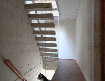 2コートハウス(仕切りつつ繋がるワンルームでネコと緑豊かに暮らす)