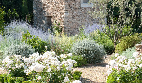 Lay of the Landscape: 12 Elements of Provence Garden Style