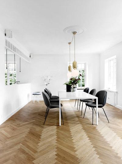 Skandinavisk Alrum by Design Circus