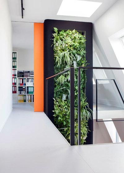 Minimalistisch Arbeitszimmer by Bachmann Badie Architekten