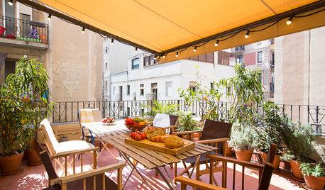 Pregunta al experto: 7 plantas para tener una terraza perfecta