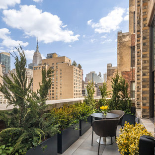 Example of a small trendy apartment balcony design in New York with no cover