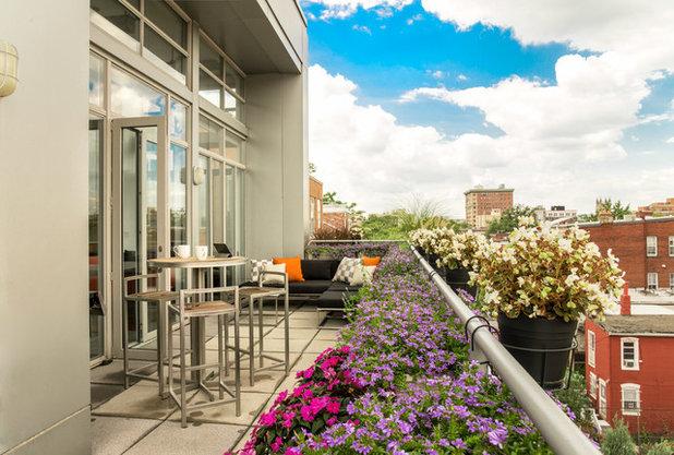 Contemporain Balcon Contemporary Deck
