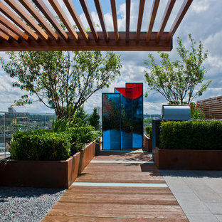 Contemporary Penthouse Roof Terrace by Aralia 'Chelsea Creek'