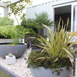 Defiance RHS Show Garden