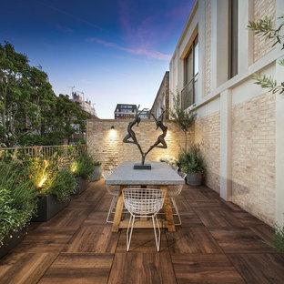 Immagine di grandi terrazze e balconi minimal con un giardino in vaso, nessuna copertura e parapetto in metallo