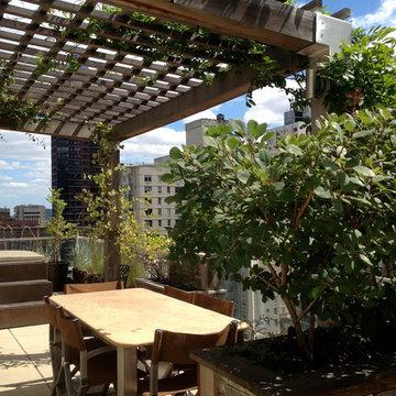 Manhattan House Rooftop