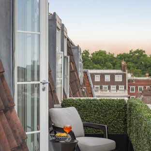 Inspiration for a small contemporary terrace and balcony in London with a potted garden and no cover.