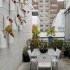 Outdoor Fix-Ups: Setting Up a Vertical Garden