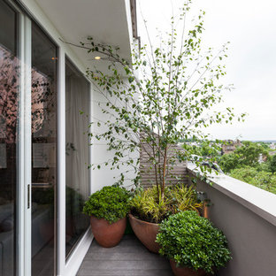 Inspiration for a contemporary terrace and balcony in London.