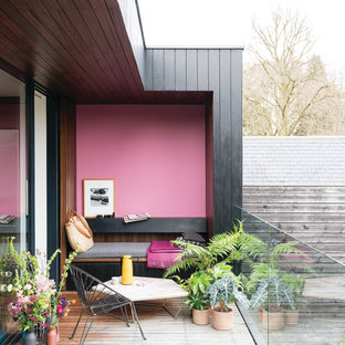 Foto di terrazze e balconi minimal con un giardino in vaso, un tetto a sbalzo e parapetto in vetro