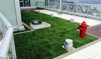 Rooftop Dog Area