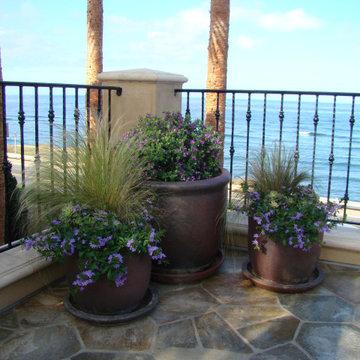 San Diego Mediterranean Outdoor Living