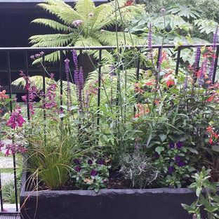 Small world-inspired metal railing balcony in London with a potted garden.