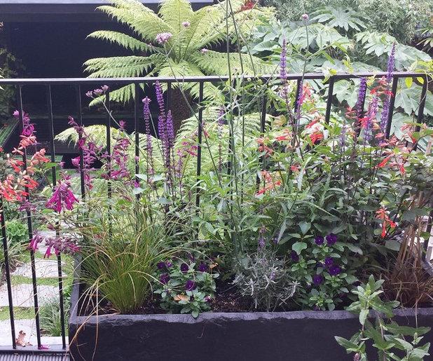 Tropisk Altan by Fenton Roberts Garden Design