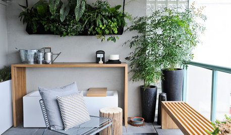 What Plants to Choose for Your Balcony Garden