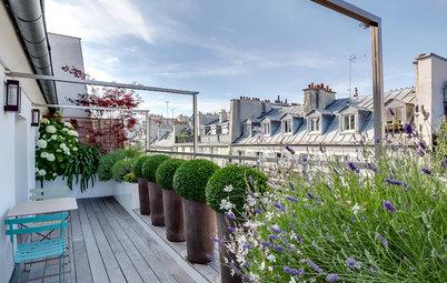 Vorher-Nachher: Ein Balkon über den Dächern von Paris blüht auf