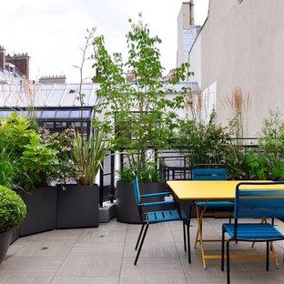 Réalisation d'une terrasse avec des plantes en pots design avec aucune couverture.