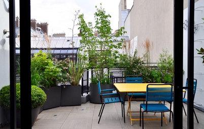 Avant/Après : Une terrasse urbaine se mue en écrin de verdure