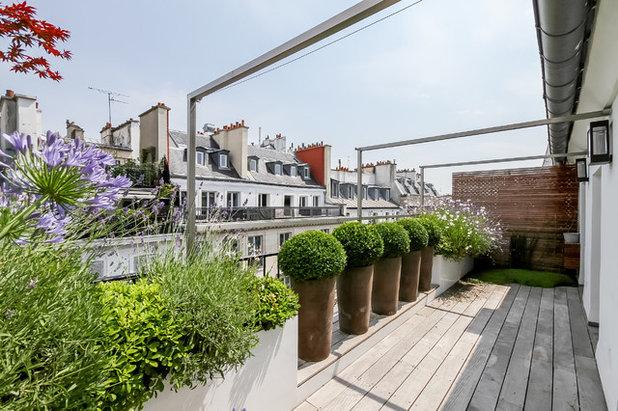 Contemporáneo Balcones by Terrasses des Oliviers - Paysagiste Paris