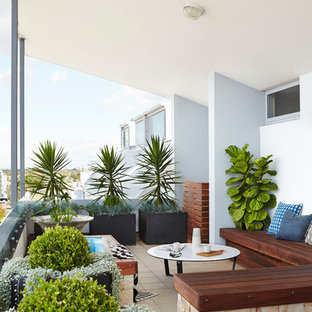This is an example of a contemporary balcony in Sydney with a potted garden.