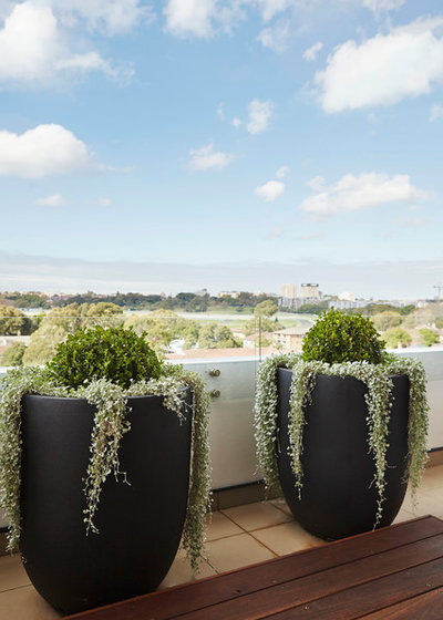 Contemporary Balcony by Harrison's Landscaping