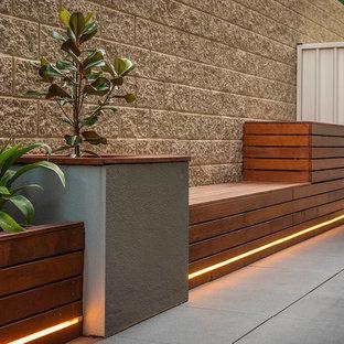 Exempel på en liten modern balkong, med en vertikal trädgård