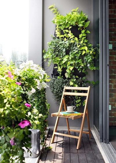 Contemporain Balcon by Maison Mason Pte Ltd