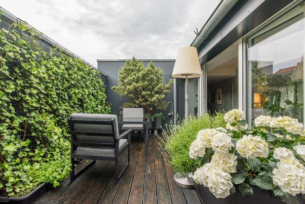 Contemporain Balcon by Ohlde interior design