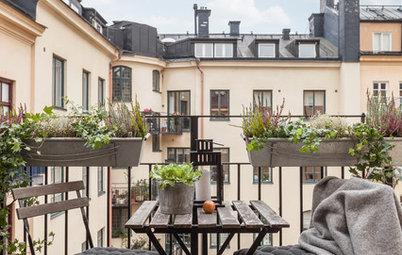 Expertens råd: Så får du balkonglådan att blomma länge och fint
