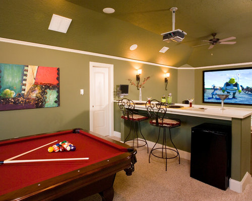 Our 25 best houston basement ideas houzz for Houses in houston with basements