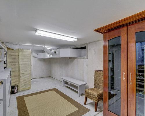 fl basement design ideas renovations photos