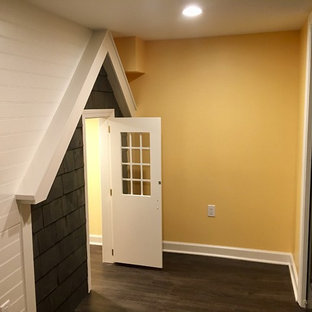 Design ideas for a basement in DC Metro.