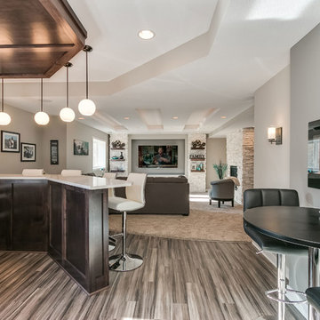 Basement Bar and Home Theater