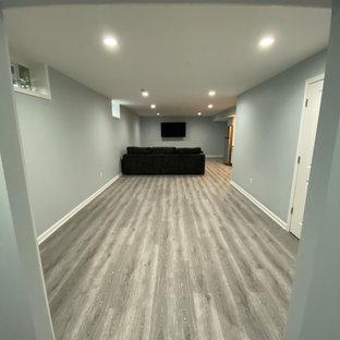 Idée de décoration pour un sous-sol minimaliste enterré et de taille moyenne avec un mur gris, un sol en vinyl et un sol gris.